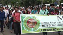 نگرانی کشاورزان کلمبیایی از نابود کردن مزارع کوکا