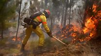 Dozens detained over Chile forest fire