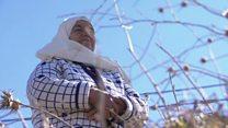 تجدد آمال فلسطينيين بقرب استرجاع أراضيهم