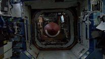 Astronaut throws football '564,644 yards'