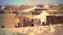 သဲကန္တာရ ဒုက္ခသည်တွေအတွက် ရာသီဥတုဒဏ်ကို ခံနိုင်မယ့် အိမ်တွေ ဆောက်ပေးနေ