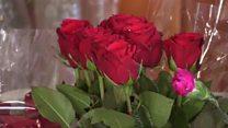 الورود في أوقات الحرب