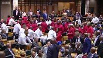 ملاكمة في برلمان جنوب أفريقيا