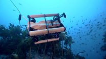 4 تك: كاميرا تصور على عمق ألف متر تحت الماء