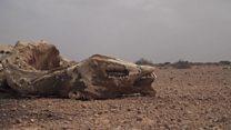 सोमालिया में सूखा