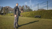 What is it like to work as a falconer?