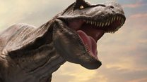 راز دانش: کشف فسیل دایناسورهای پرندهای که زایمان میکردند