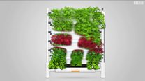 4 تك: تكنولوجيا تسمح بالحصول على حديقة داخيلة في المنزل