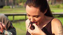 Angelina Jolie chế biến đặc sản nhện rán