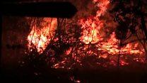 В Чили не стихают лесные пожары