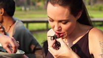 Angelina Jolie mostra como cozinha aranhas e escorpiões para os filhos