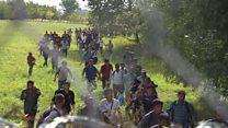 گروهی از پناهجویان از آلمان به افغانستان بازگردانده شدند