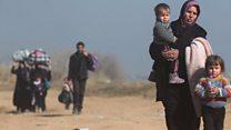 """"""" تطاير جسد حفيدتي أمامي بسبب هجمة تنظيم الدولة"""""""