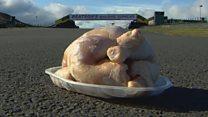 How far does school dinner chicken travel?