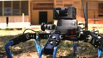 Robots explore site of ex-leprosy colony