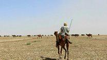 گرفتاری ها و پیامدهای خشکسالی در ایران