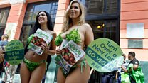 Бикини из салата - агитация за жизнь без мяса