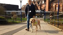 Guide dog 'saves' blind footballer