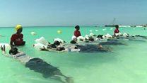 Zanzibar : objectif 0 noyade