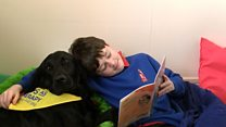 Therapy dogs boost pupils' reading