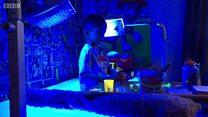 Жизнь под светом синих медицинских ламп
