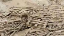कीचड़ में फंसी महिला कैसे सुरक्षित निकली