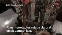 Upaya Riau melawan asap kebakaran hutan