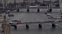 Victim falls from Westminster Bridge