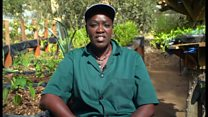 Le micro-jardinage à Dakar