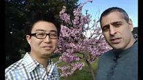 چالش تبریک نوروزی؛ بهانه ای شده برای مبارزه با بیگانه هراسی