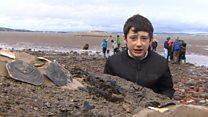 The kids helping Scotland's coastal wildlife