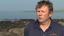 Tidal energy project could 'devastate livelihoods' warns fisherman