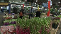 Covent Garden flower market moving for third time