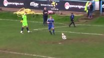 Dog's pitch invasion halts football game