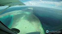 Большой Барьерный риф: спасти, пока не поздно
