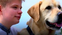 Autistic boy and his dog raise £30,000