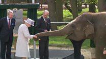 """بالفيديو: ملكة بريطانيا تطعم الفيلة """"دونا"""" موزا"""