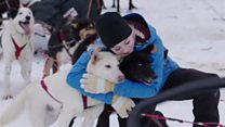 Pawsome dog sledders finish Polar journey
