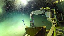 Редкоземельные сокровища морского дна несут угрозу для океанов