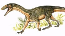 Croc-like creature came before dinosaurs