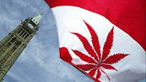 How Canada plans to legalise marijuana