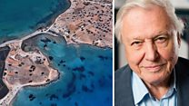 Revamped Google Earth adds Attenborough