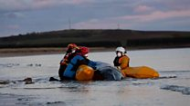 Volunteers refloat stranded whale