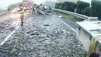 Трасу засипало живою рибою