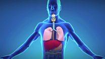 آزمایش خون، راهی تازه در تشخیص برگشت سرطان ریه