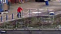 Man rescues cat from London Docks