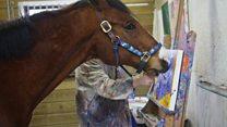 Así pinta Metro, el caballo que se financia su tratamiento médico pintando