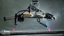The self-balancing, sprinting robot