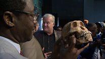 နှစ် ၂ သိန်းကျော်က ကျောက်ဖြစ်ရုပ်ကြွင်း