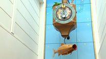 Cheltenham's wishing fish clock back in action